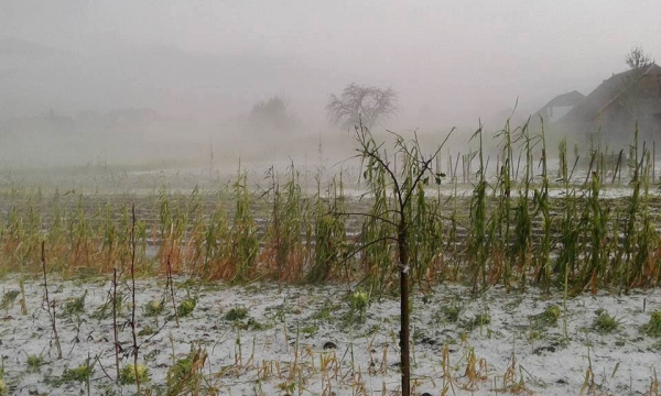 Imagini pentru iarna in plina vara