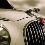jaguar masina