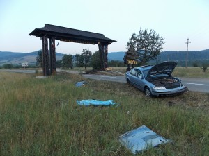 accident putna (2)