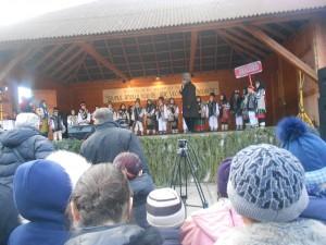 festival draguseni (45)